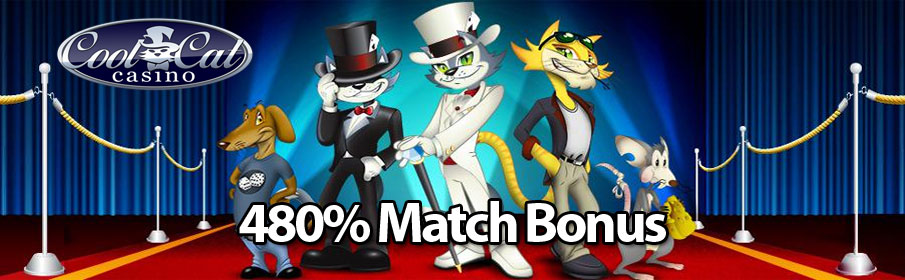 Cool Cat Casino VIP Bonus – Get 480% Match Offer