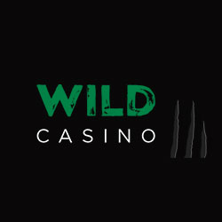 Wild Casino Review 2020 Get Free Spins Welcome Bonus
